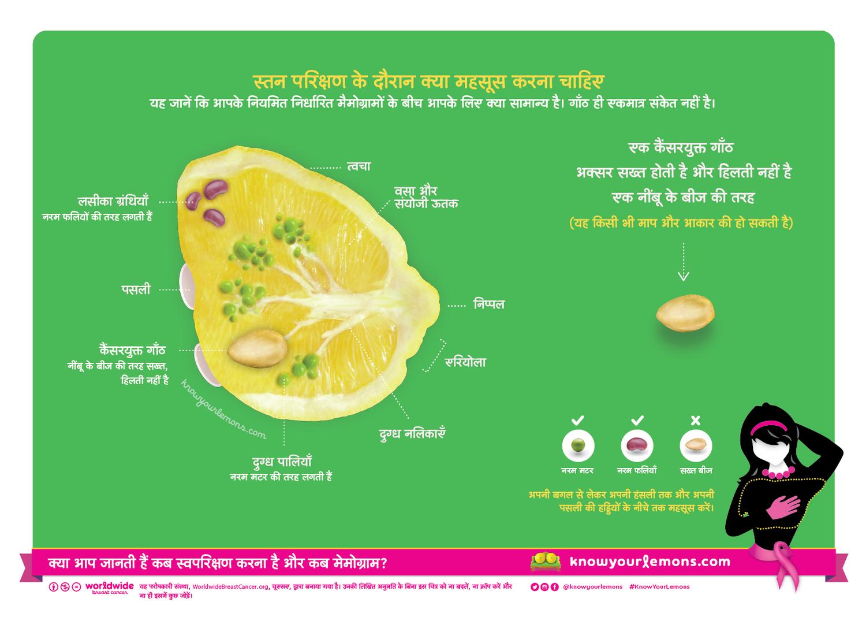 Pin On Know Your Lemons Hindi ह द