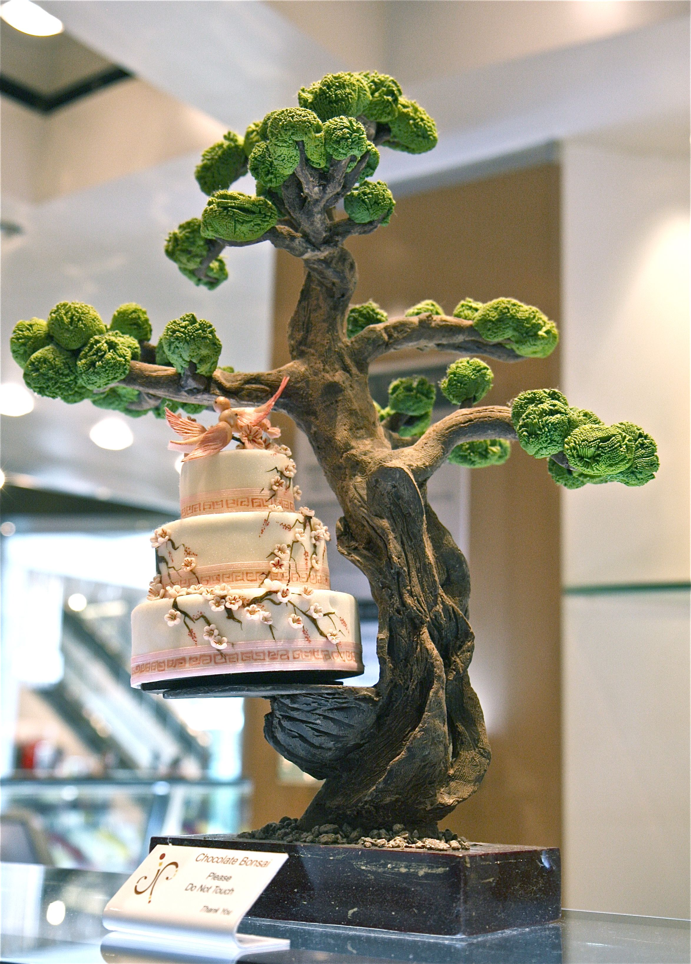 1000 Images About Wedding With Bonsai On Pinterest