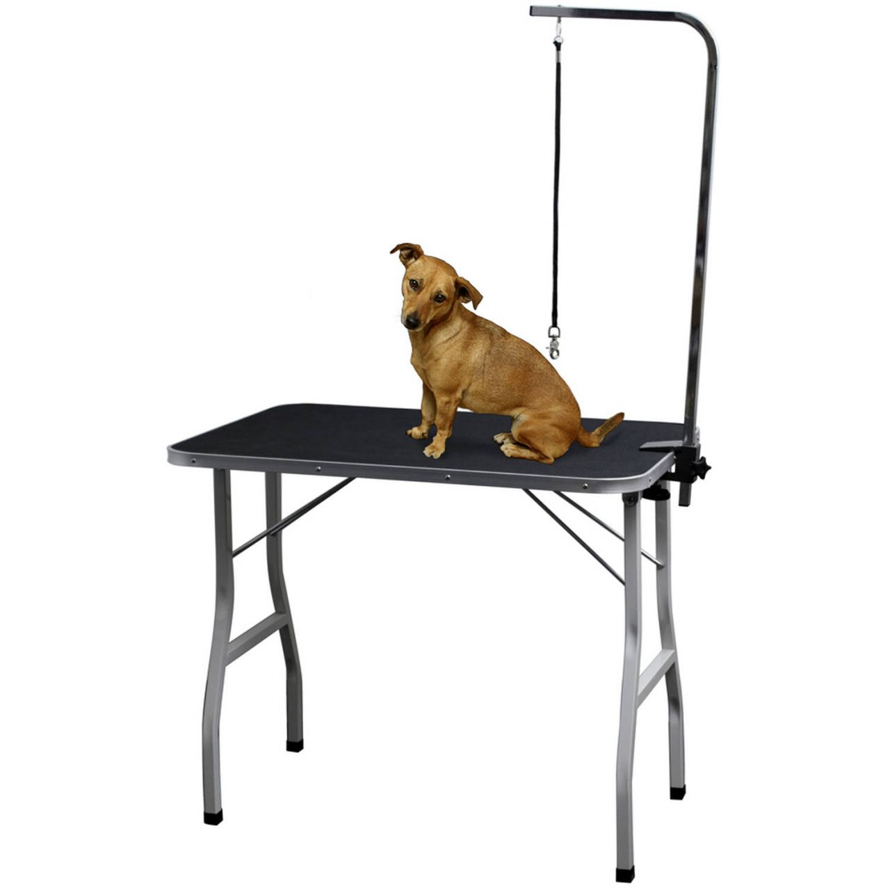 Dog Grooming Tables For Small Dogs Office Furniture For Home Check More At Http Www Nikkitsfun Com Dog Grooming Tables For S With Images Pet Grooming Dog Grooming Pets