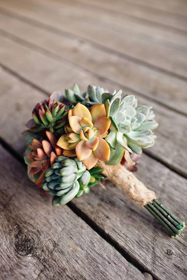 Rosette / Wedding Succulent Cuttings