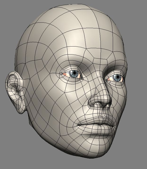 automob 3d anatomy tutorial - 623×716