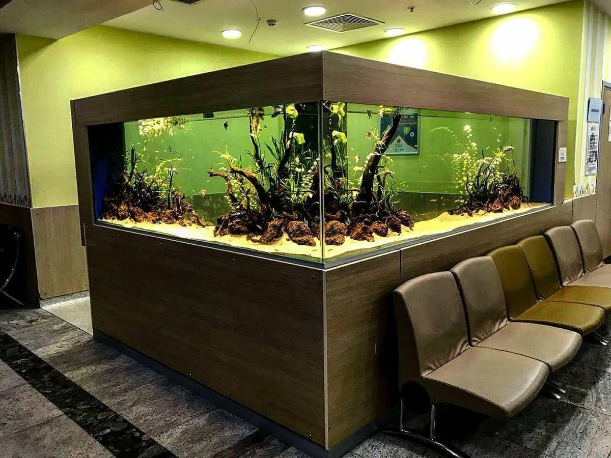 крутые аквариумы фото было