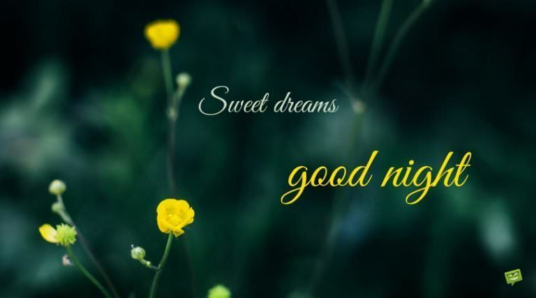 Never Stop Dreaming With Images Good Night Messages Night