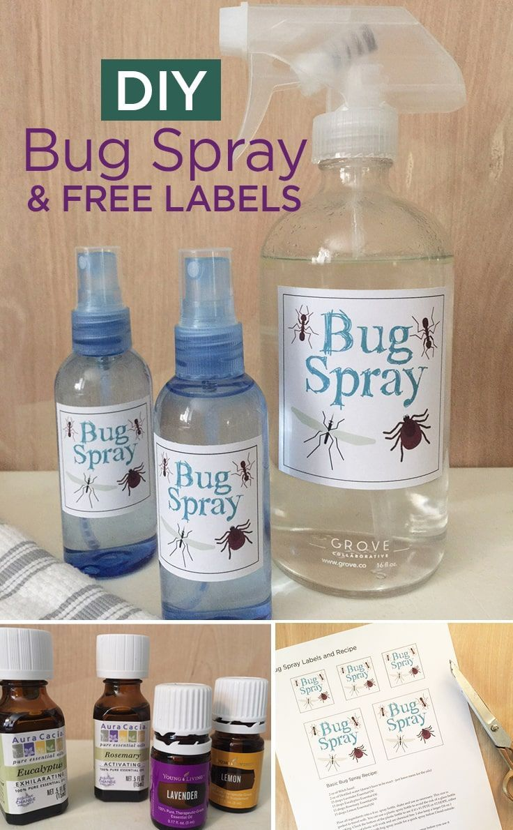 Diy Bug Spray With Free Labels For A Safe And Natural Repellent
