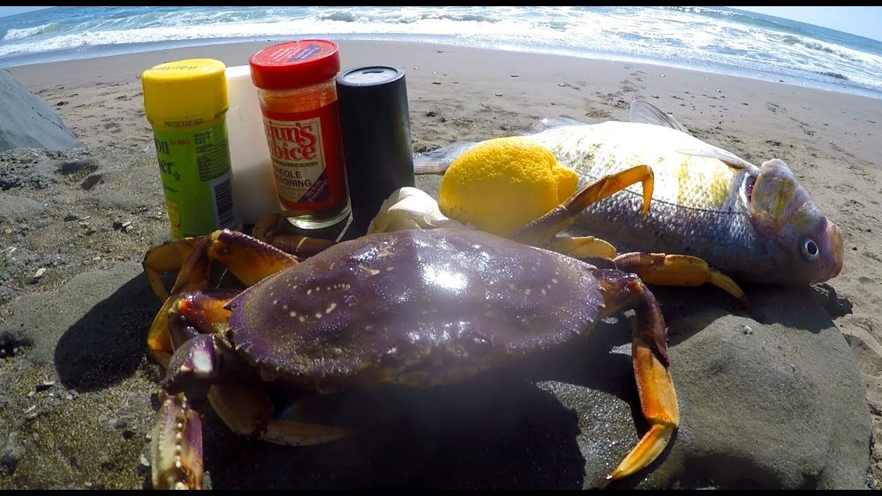 Catch and cook crab and striped bass crab striped
