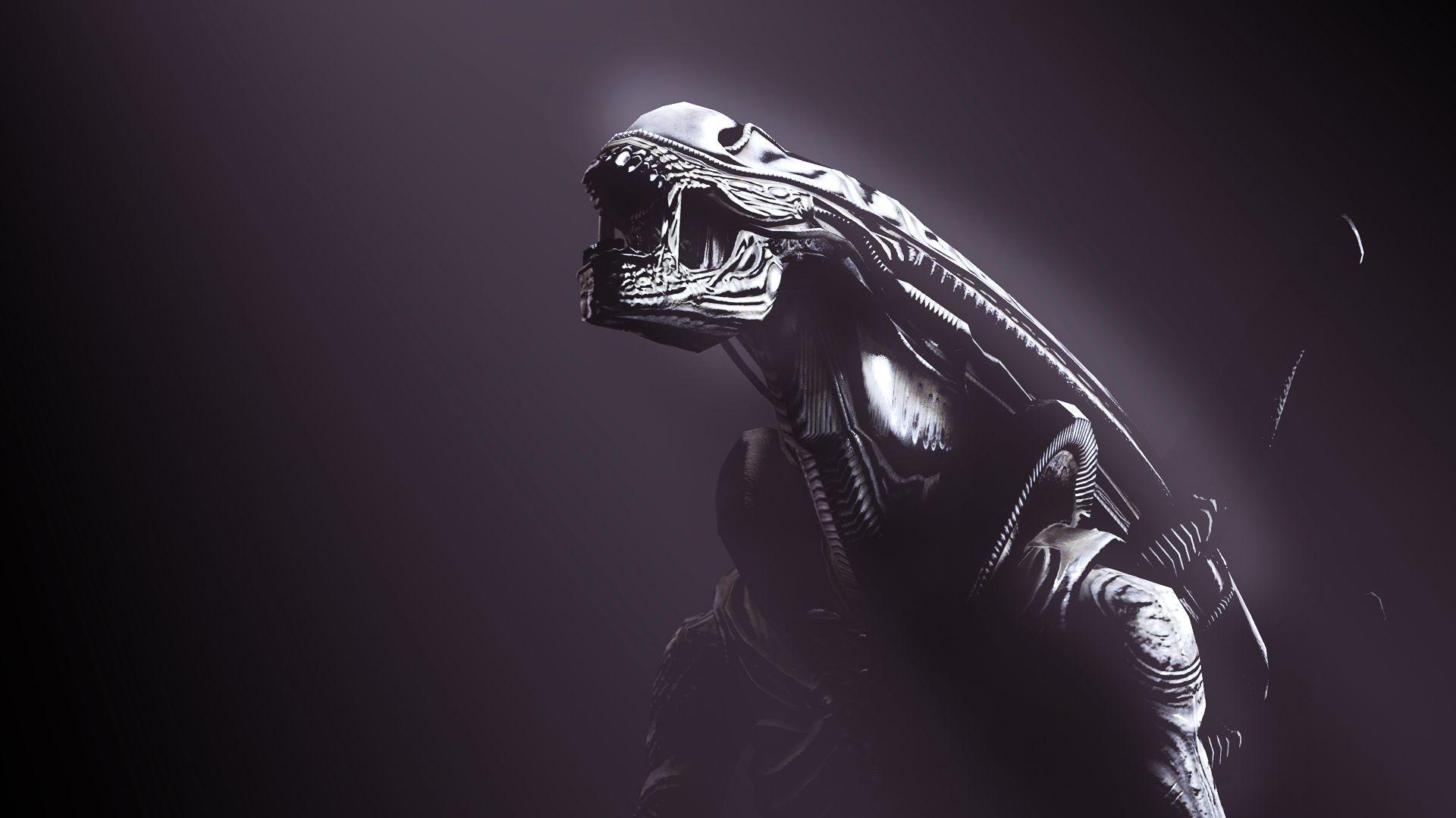 Xenomorph Wallpaper, Prometheus, Aliens Space
