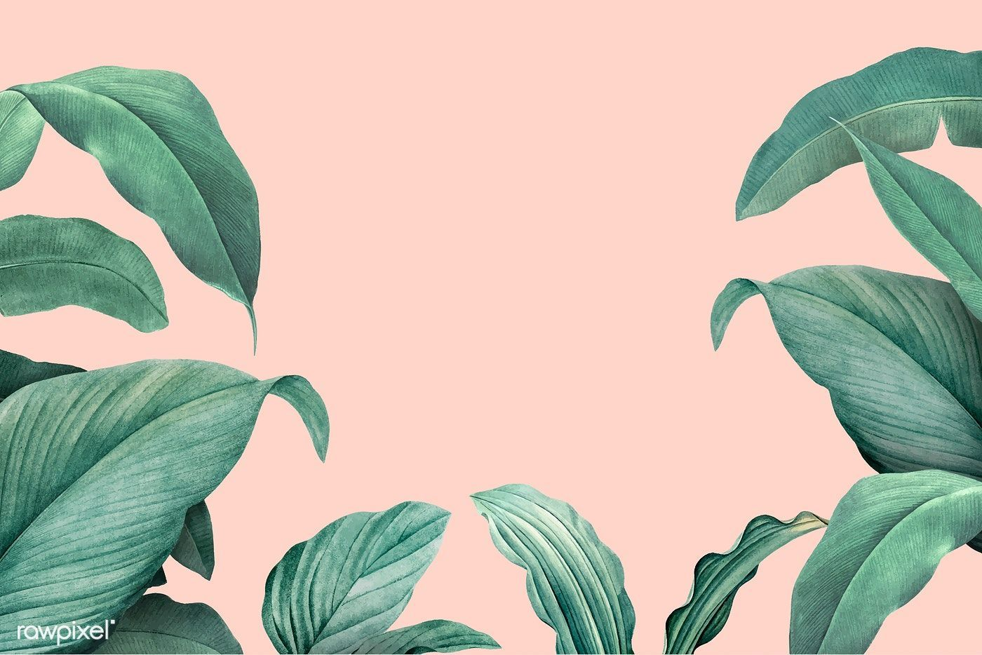 Download Premium Vector Of Hand Drawn Tropical Leaves On A Pastel Pink How To Draw Hands Tropical Leaves Pink Leaves A collection of the top 64 tropical aesthetic wallpapers and backgrounds available for download for free. download premium vector of hand drawn