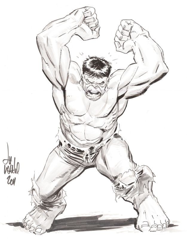 The Hulk By Lee Weeks I Think Lee S Hulk Is One Of The Very Best That The Character Has Ever Seen Hulk Marvel Comic Books Art Hulk Coloring Pages