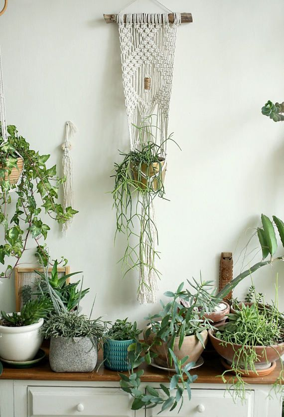Hanging Plant Wall Decor : Hanging planter macrame plant hange wall