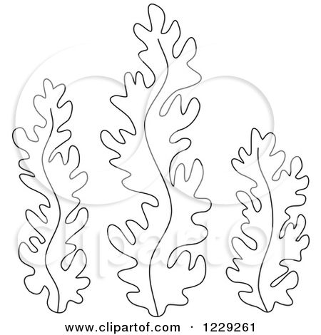 Clipart Of Outlined Seaweed