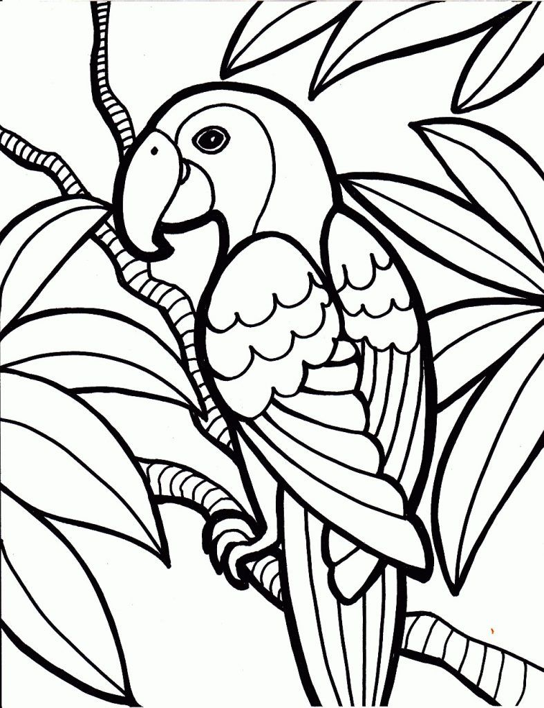 - Free Printable Parrot Coloring Pages For Kids Bird Coloring