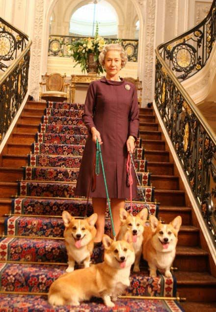 I D Be Smiling If Those Were My Stairs Too Corgi Corgi Queen