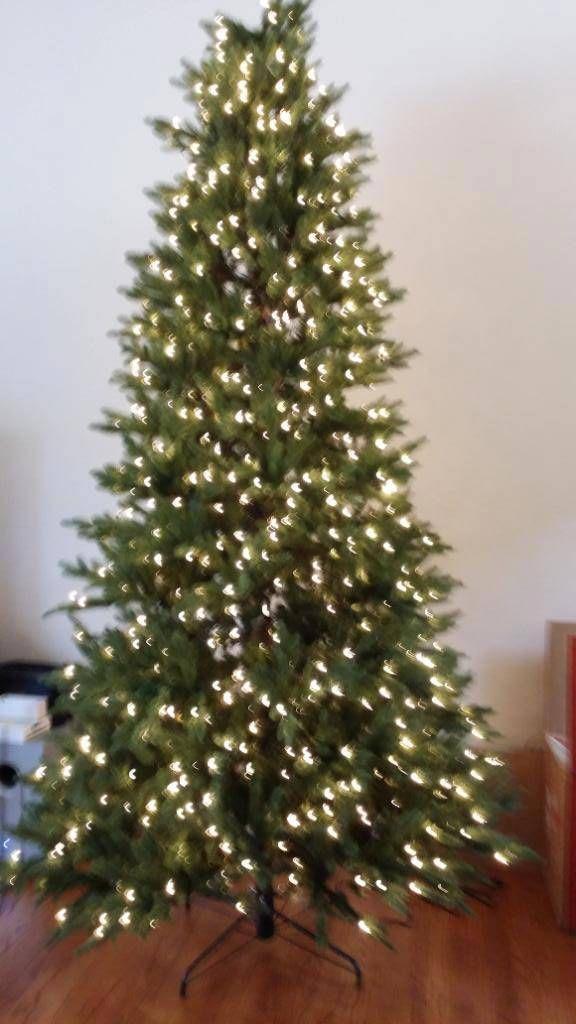 Bh Fraser Fir Artificial Christmas Trees Balsam Hill Red And Gold Christmas Tree Christmas Tree Inspiration Christmas Tree