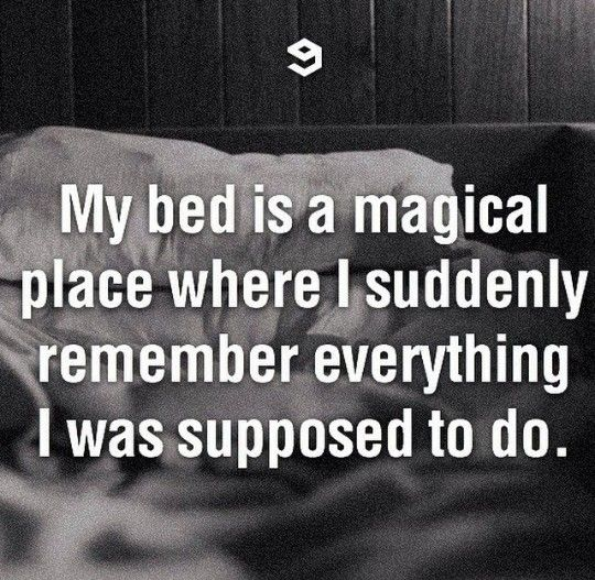 My bed is magical...
