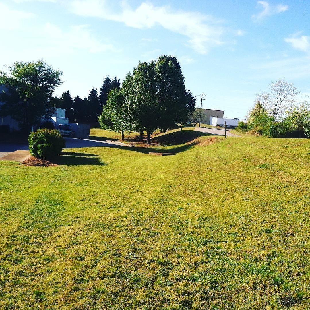 #diagonallawnstripes #commerciallawncare #beginnersguidetolawncare #lawncare #landscaping #lawnbusinesscourse