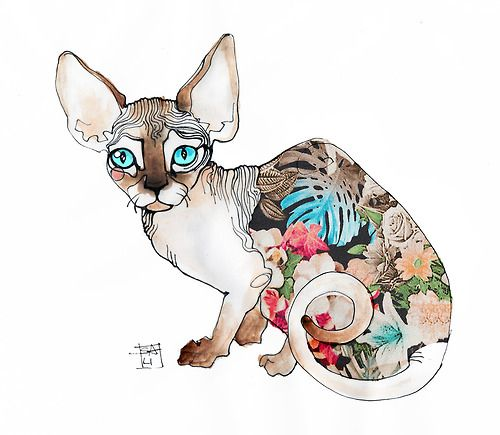 Illustration by Sara Ligari  more sphynx cat illustrations here via KloudPics mobileapp