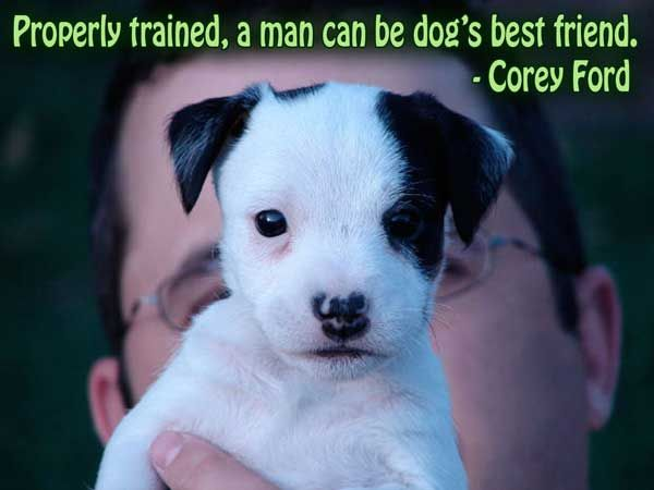 Trust Quotes: Dog Quotes About Friendship With The Picture Of Its Self