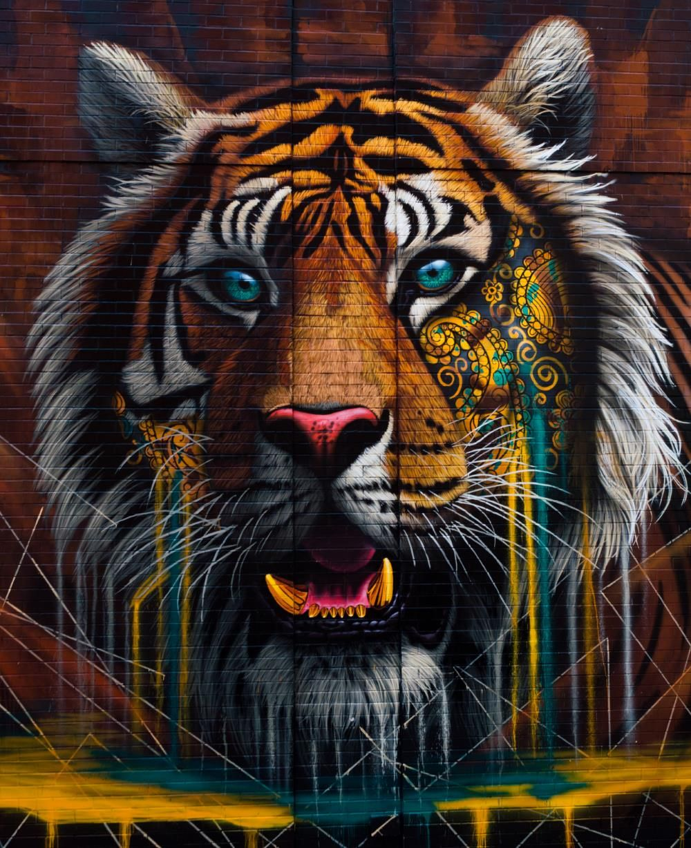 Tiger Mural On Lafayette St Soho Nyc A Project L I S
