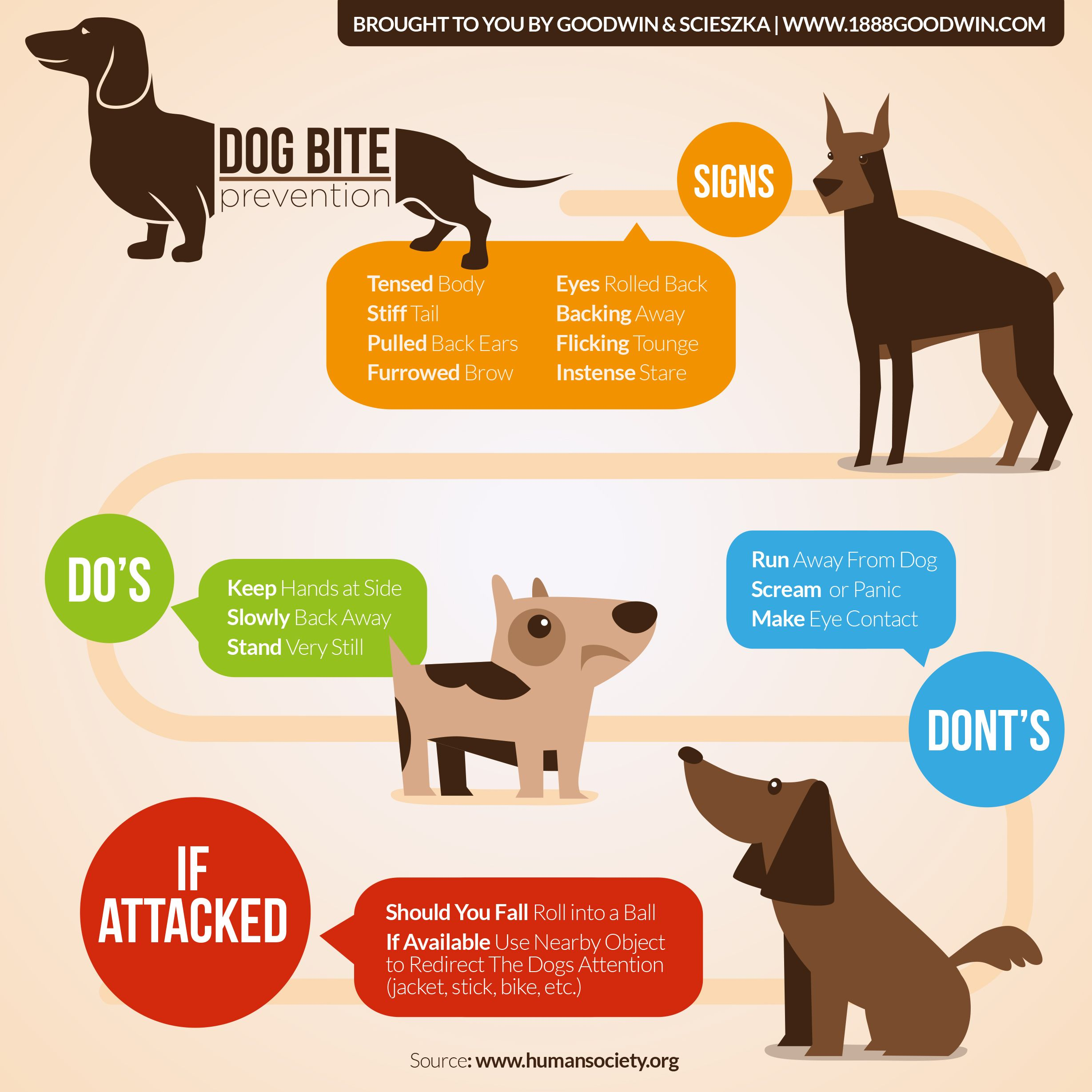 Pin On Dog Bite Injury