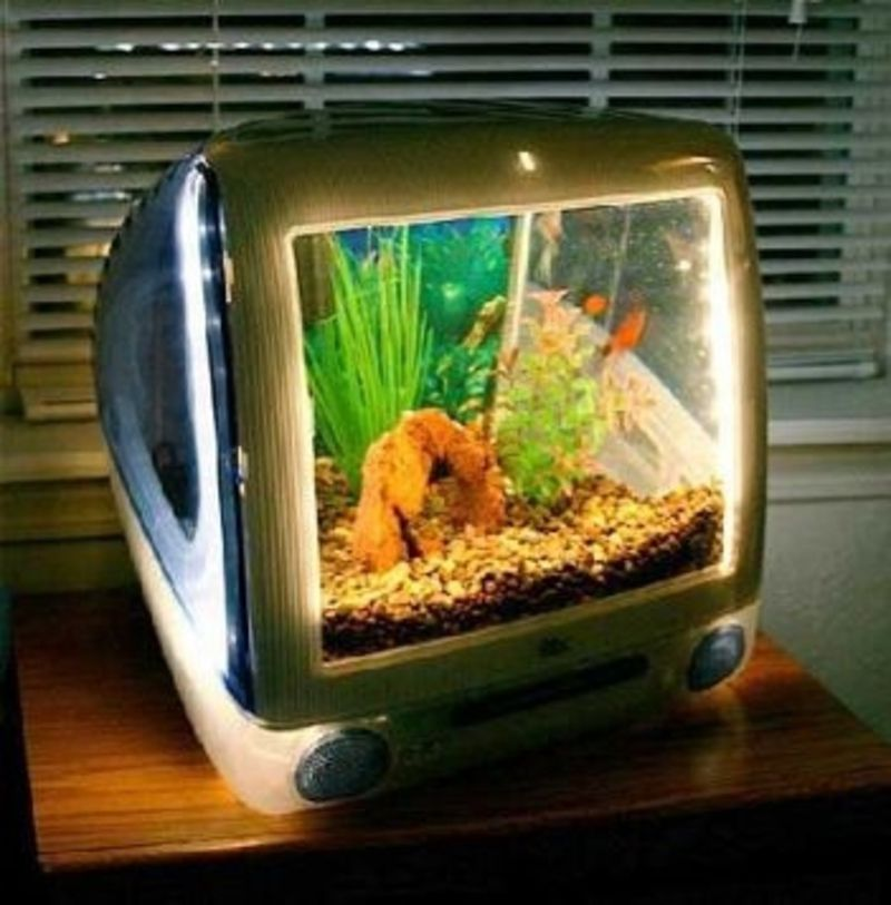 28 #Everyday Items #Turned Into Fish #Tanks And #Aquariums .