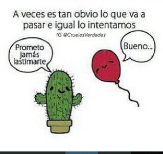 Prometo jamas lastimarte cactus y globo pinterest - Informacion sobre los cactus ...