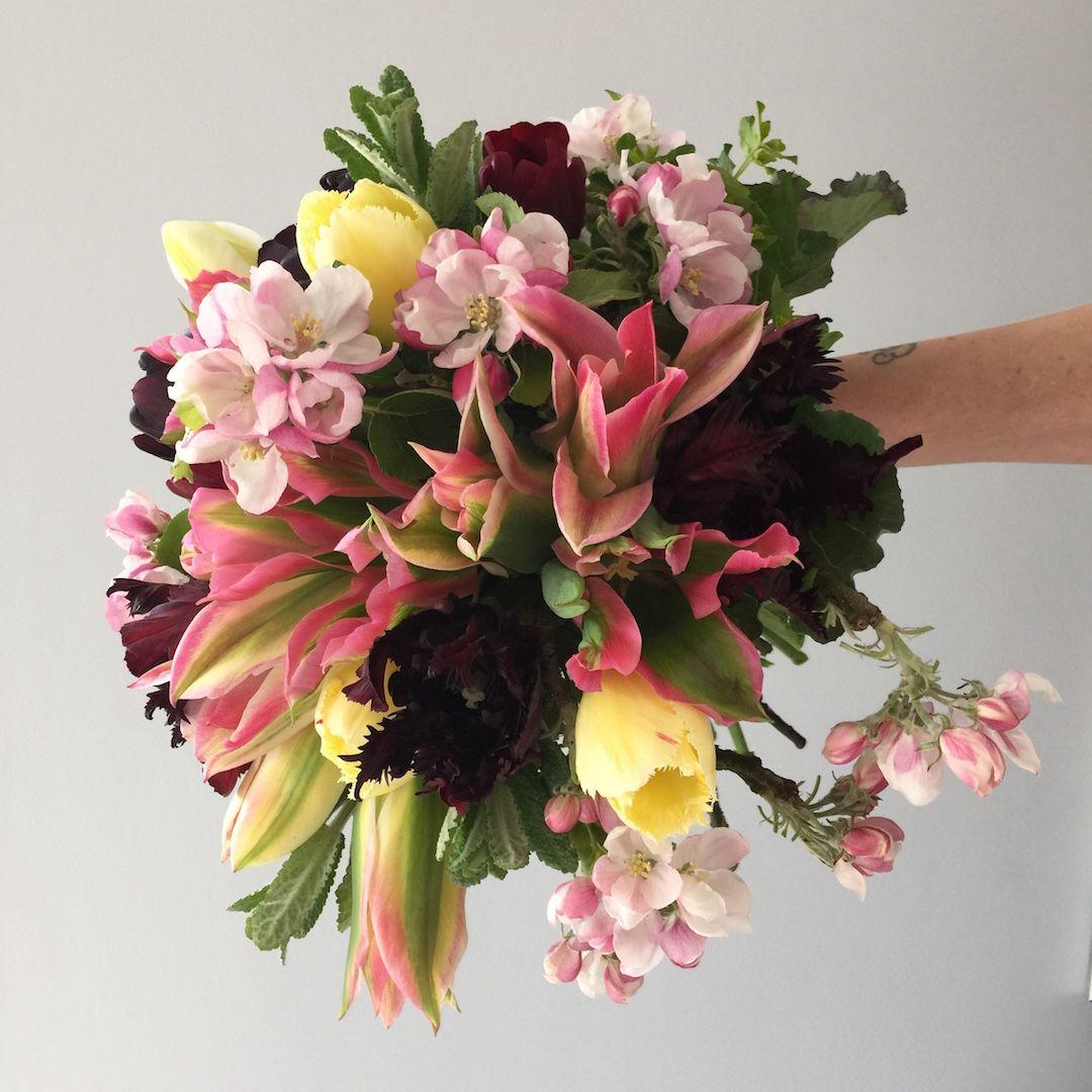 Electric Daisy Flower Farm | Spring Flowers | Bouquet | Bridal ...