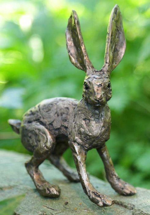 Tansy Hare