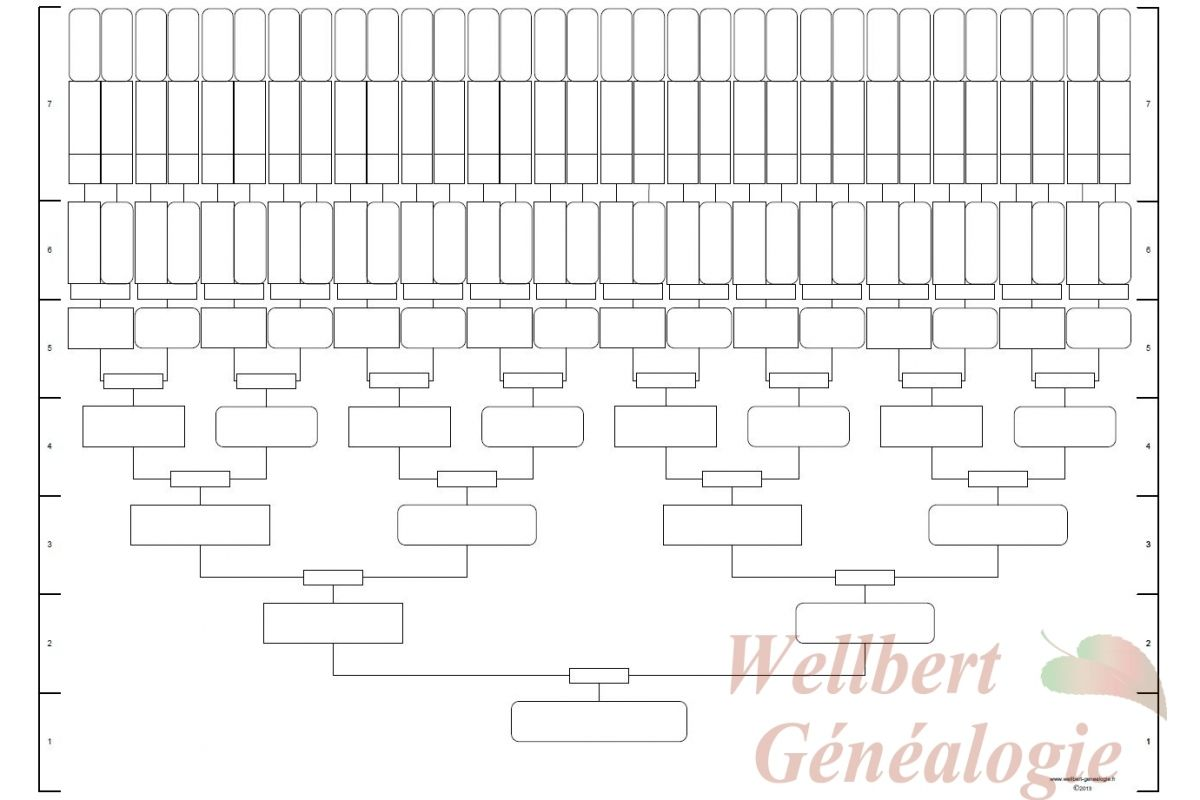 8 generation family tree template fill in family tree pinterest