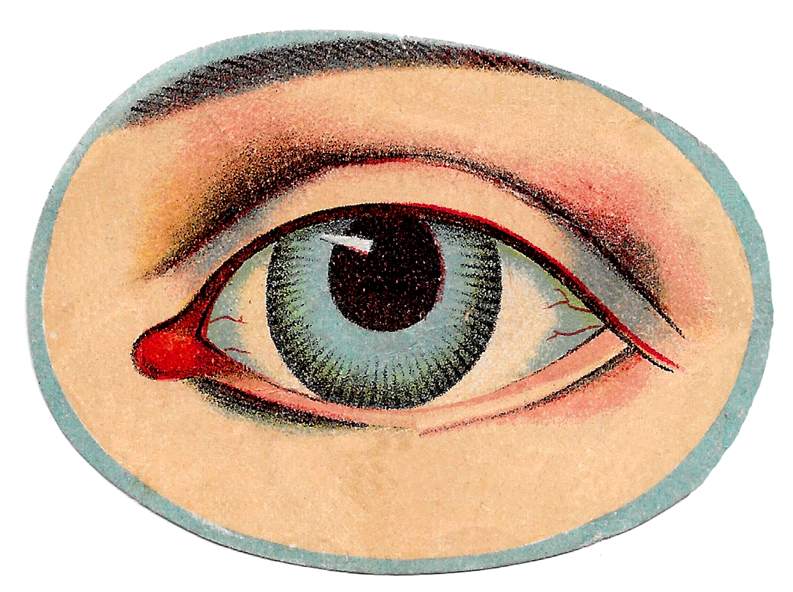 Unique Vintage Medical Human Anatomy Illustrations Of The Eye Hand And Head With Skeleton Images Eye Art Eye Illustration Antique Images
