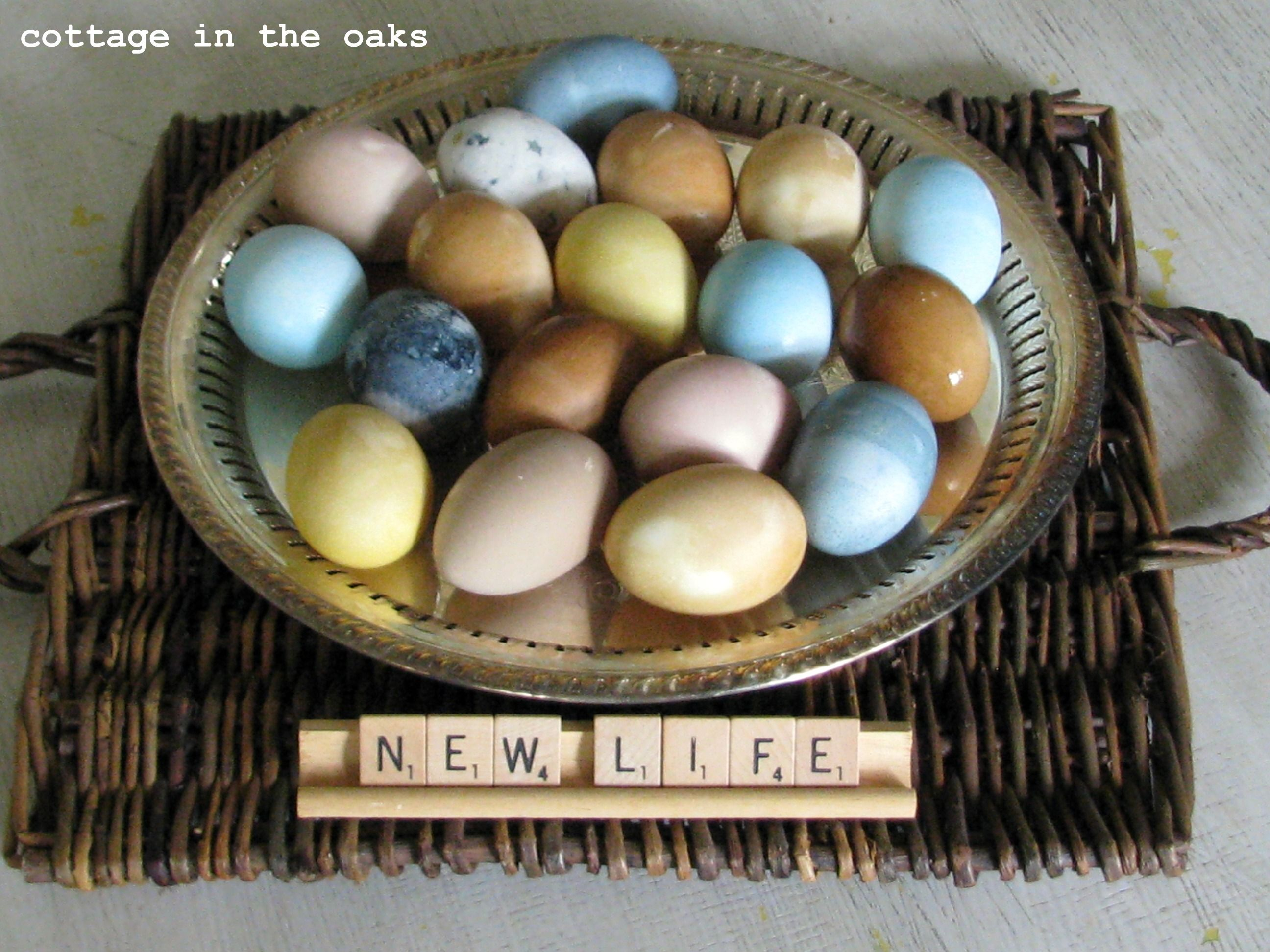 naturally dyed eggs - tutorial