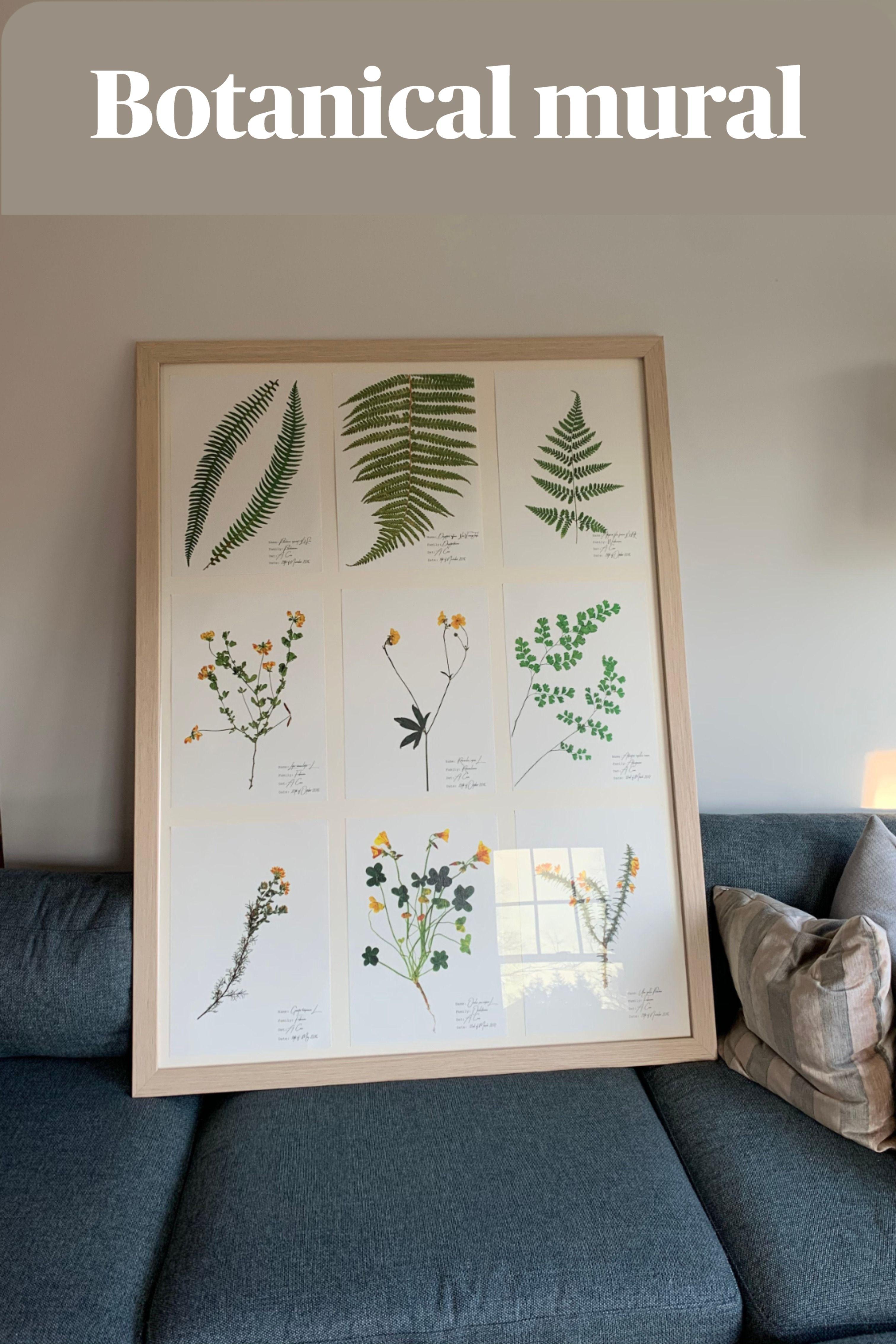 Decorative Poster.Home Room interior art design.Genarium.Flower.Nature.7847