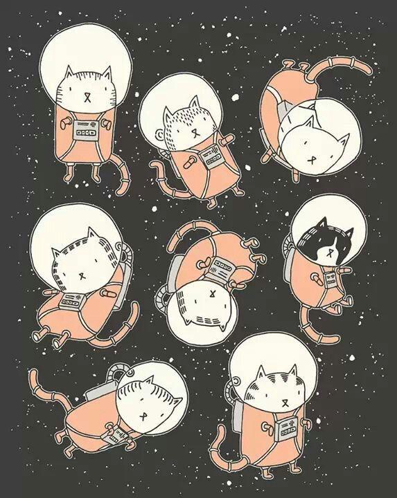 gato galactico