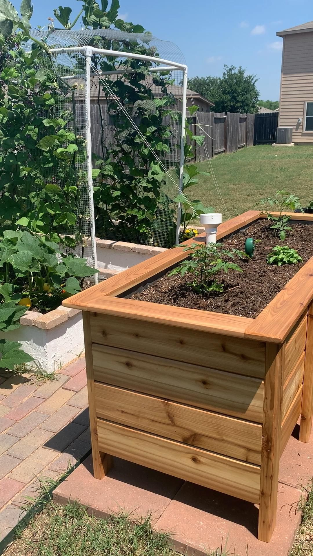New Sub-Irrigated Garden Beds: Backyard Garden Update #2  #amenagementjardin #backyard #Beds #Garden