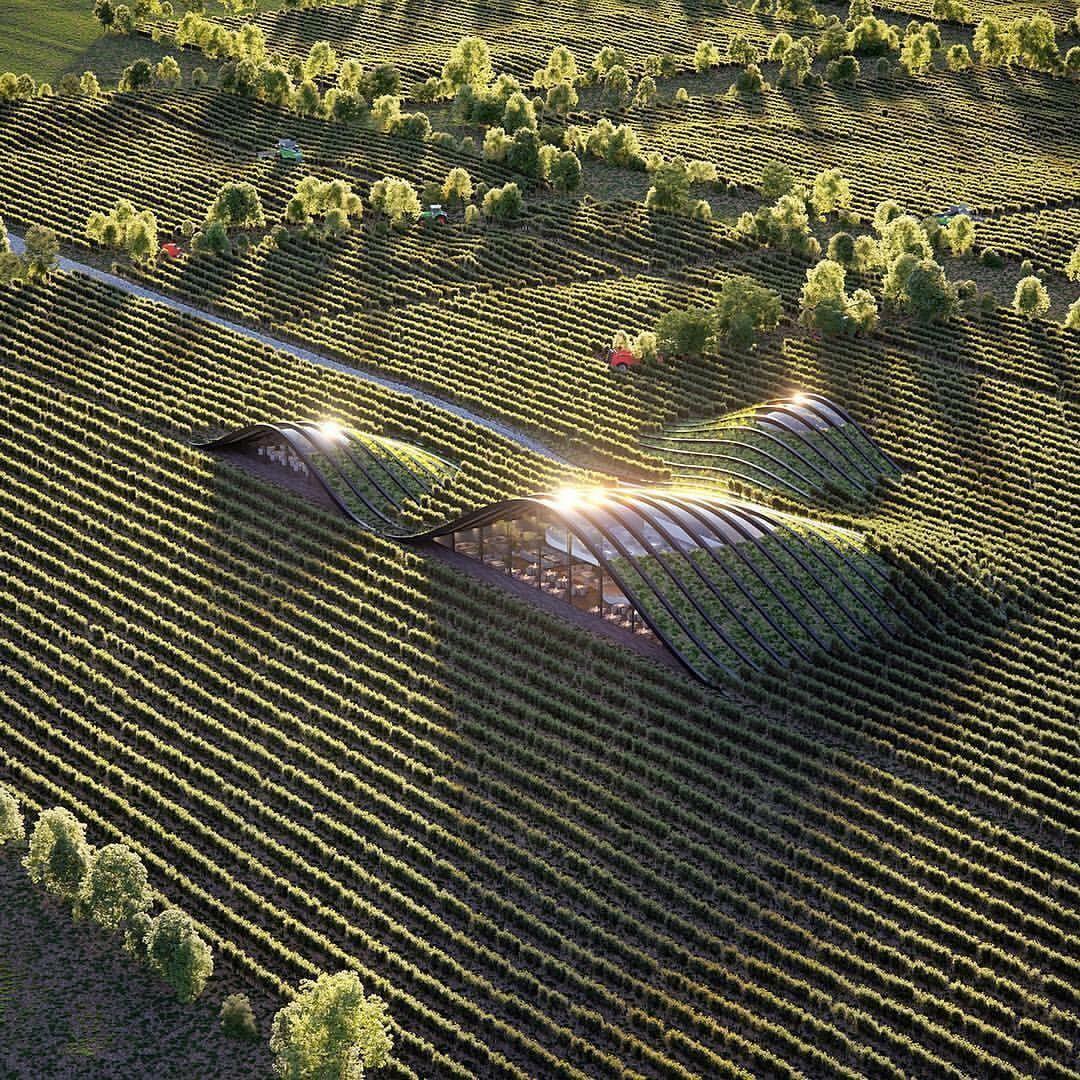 "db - design bunker (@designbunker) on Instagram: ""Beautiful vineyard in Georgia by @xarchitecture Go to @designbunker for more! #sunshine…"""