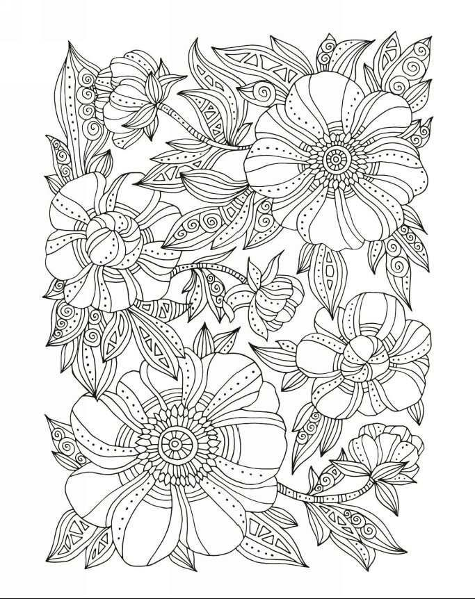 Zendoodle Coloring Fruits And Flowers Book For Grown Ups With 50 Unique Images
