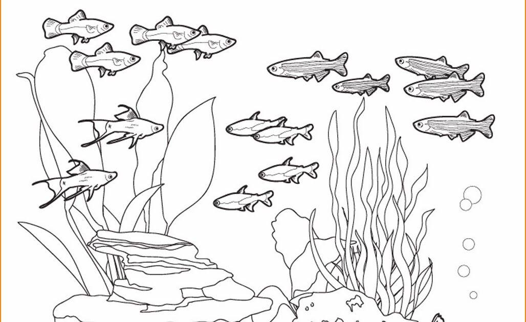 Pin Von Michi Auf Zeichnungen Zeichnungen