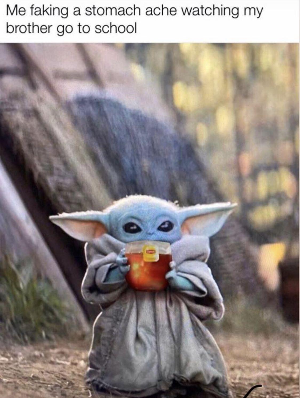 Pin By Taylor Gano On Star Wars Yoda Meme Star Wars Memes Funny Gif