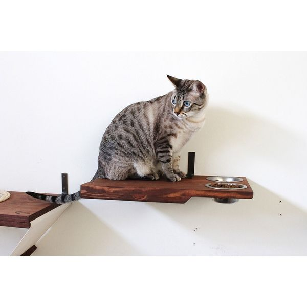 cat dining table handcrafted wall mounted feeder shelf i d love rh pinterest com