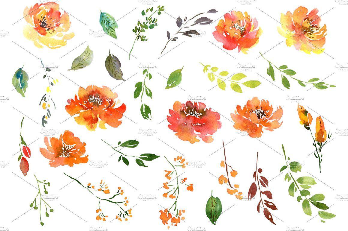 Summer Orange Watercolor Flowers Png Flower Clipart Watercolor Flowers Floral Watercolor