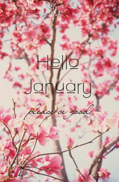 January   Hello January Please Be Good