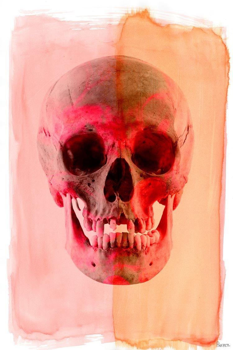Parvez Taj - Skull Canvas Wall Art G28-21-C on 2Modern