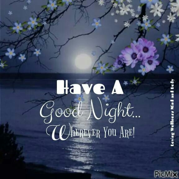 Nice Good Night Quotes With Images: Good Night, Evening