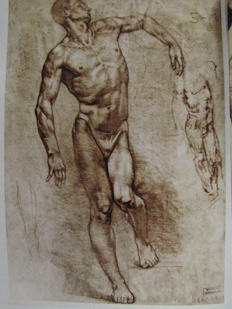 Gottfried-Bammes-The-Artist-s-Guide-to-Human-Anatomy - Google Search ...