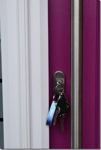 Bright Pink Front Door Contemporary Brushed Aluminium Handle | KSE ...