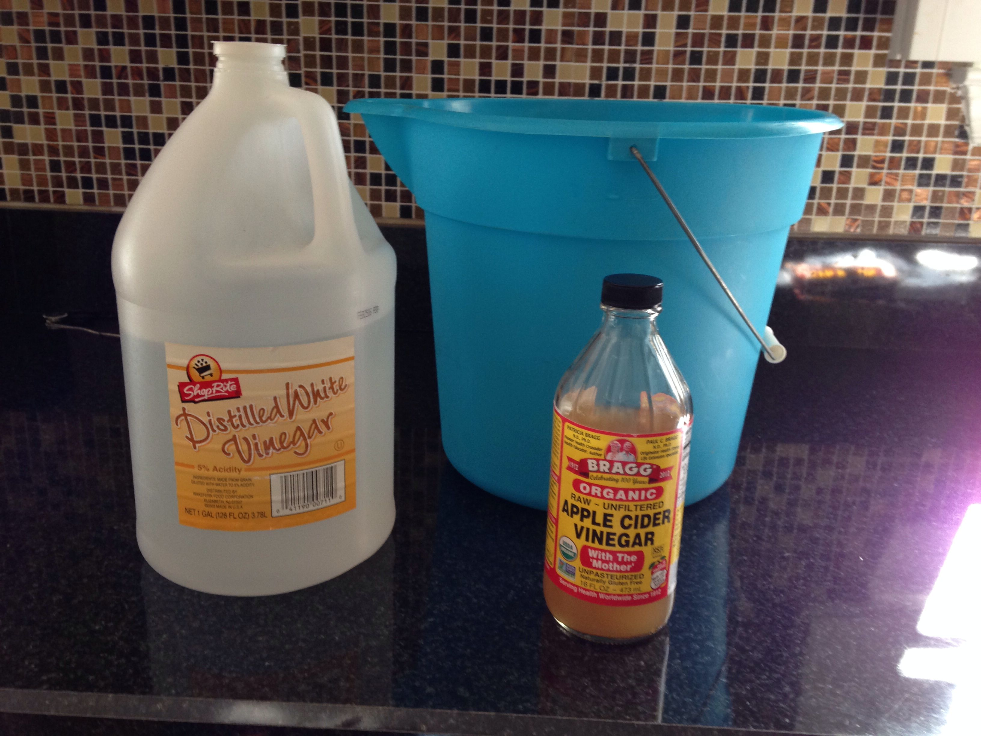 Clean your wood or laminate floors. 1/4 cup distilled