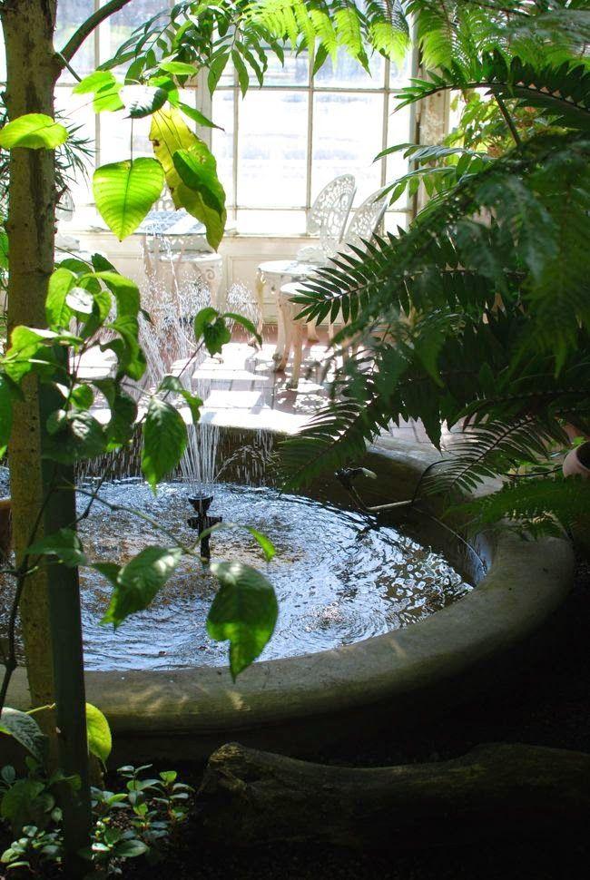 Kuistin kautta: Kasvitieteellinen puutarha: Keidas keskellä kaupunkia