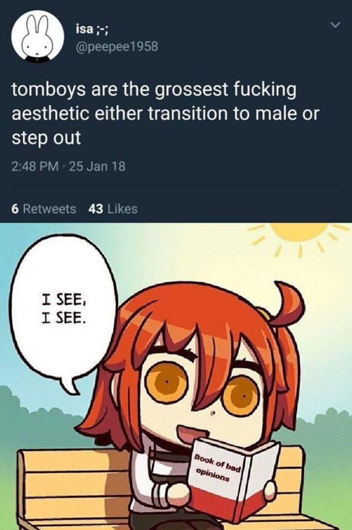 Book Of Bad Opinions Fate Grand Order Anime Memes Fate Memes