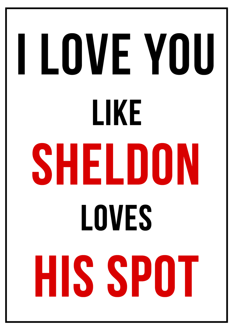 Quotes About Funny Friendship And Life I Love You Like Sheldon Loves His Spot All About Lvoe