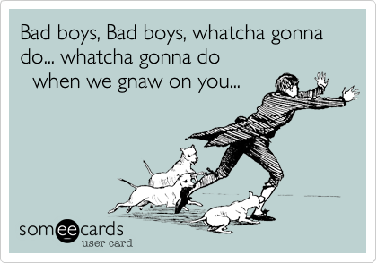Tv Ecards Funny Come Back Quotes Funny Quotes