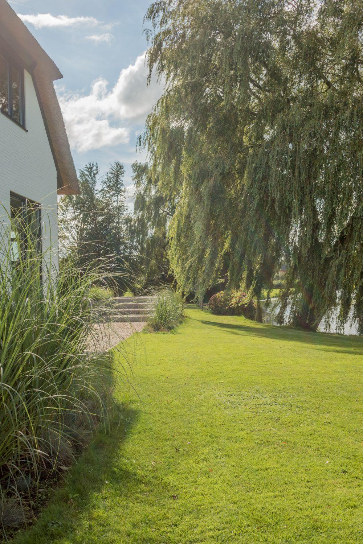 Landelijke Tuin Met Gras Grote Bomen En Trap Www